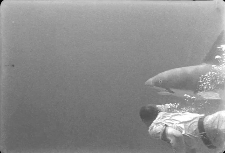 Fotograma del vídeo Movies_02  Material procedent d'arxiu, [Aviation Cadets Driling] PET996_R5B  Movies_02, (2014-2015).  Blanc i negre, so. Durada 00:04:10